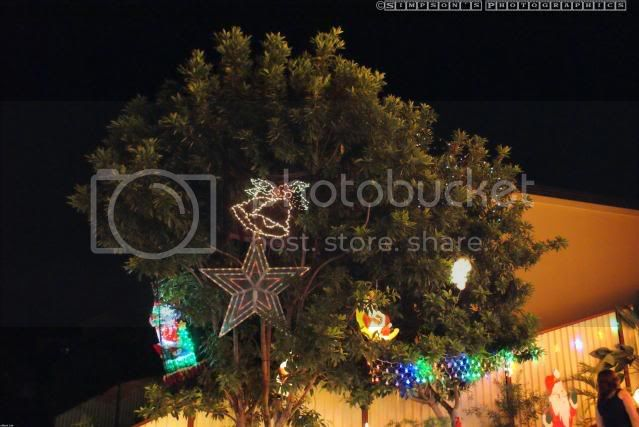 Xmas Lights 2009 by Simpsons Photographics DSC01331