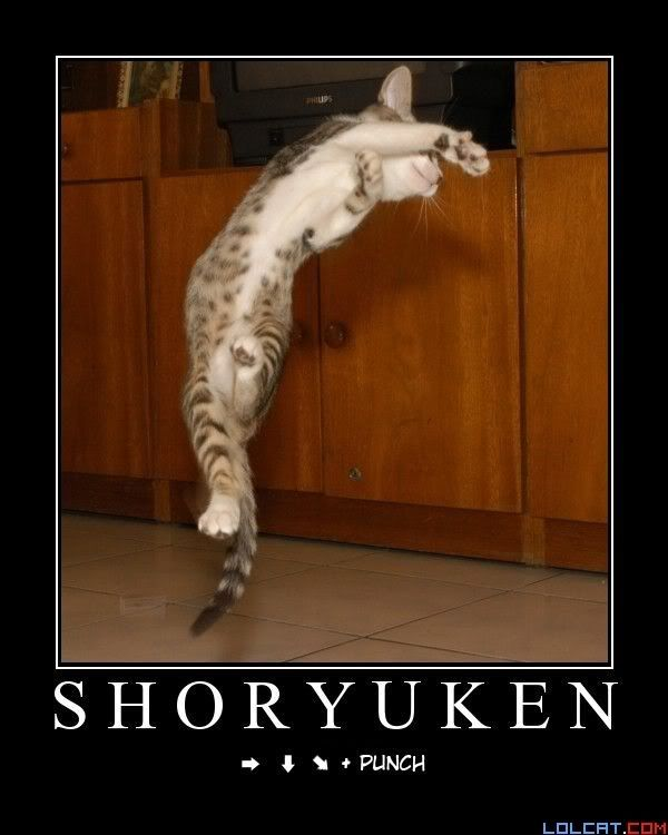 More funny photos! - Part 2 Shoryuken