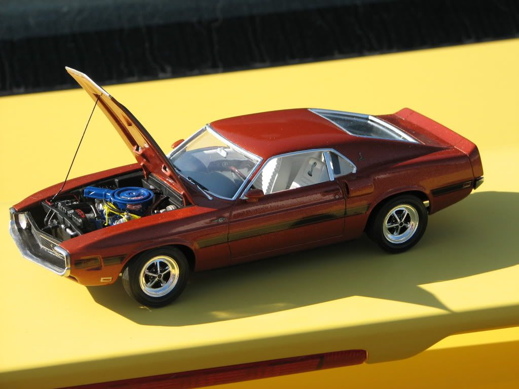 Mustang Shelby GT 500 1970 IMG_3287