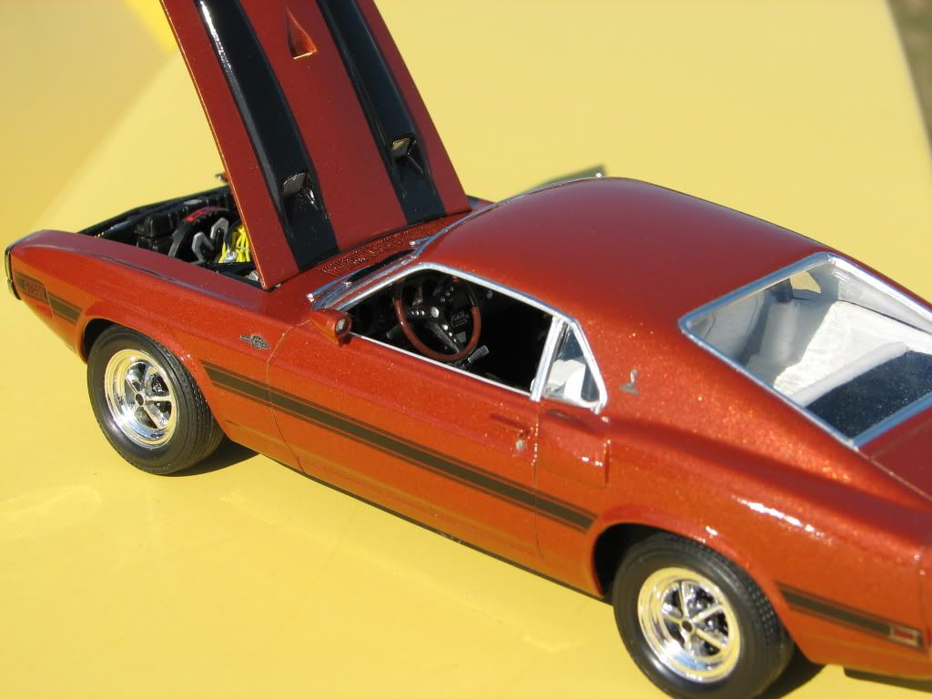 Mustang Shelby GT 500 1970 IMG_3294