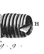 1733 BouchonCulasseDiderot