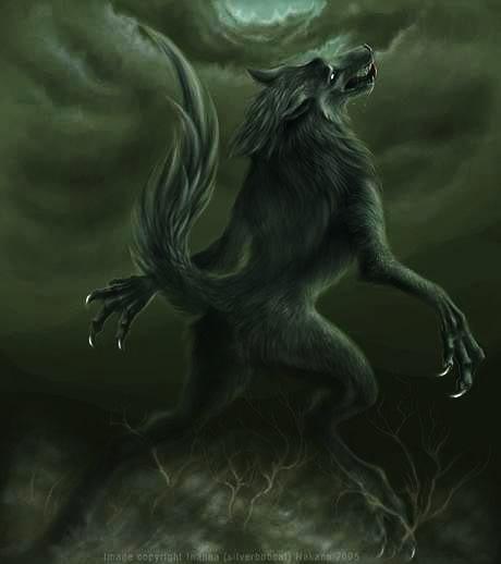 Werewolf Pictures Werewolf3-1