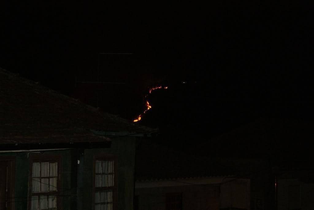 Incendio AROUCA/ALVARENGA - Portugal DSC01721