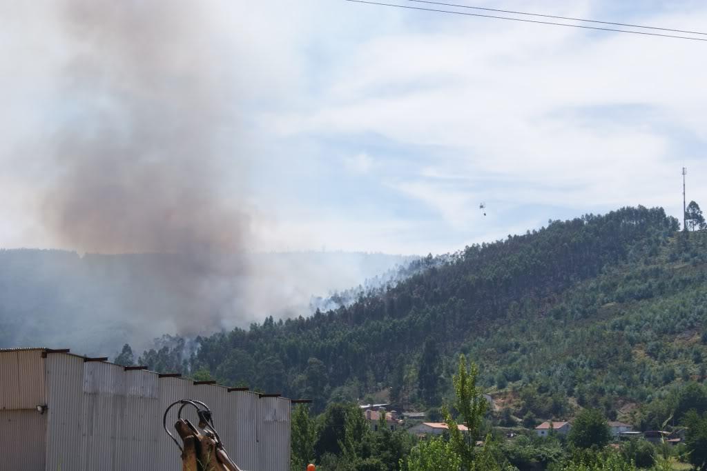 Incendio AROUCA/ALVARENGA - Portugal DSC01731