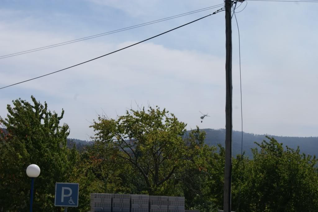 Incendio AROUCA/ALVARENGA - Portugal DSC01732