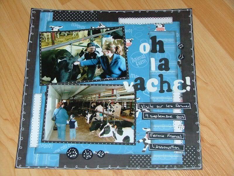 Décembre 2009/ Janvier 2010 Ohlavache