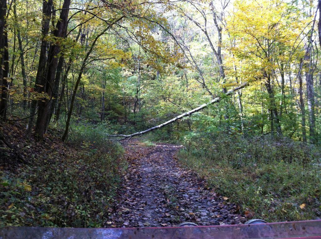 Wayne National Forest  - Page 2 0BA4496E-78CA-44C5-9841-606003C6E250_zpsribdiacu
