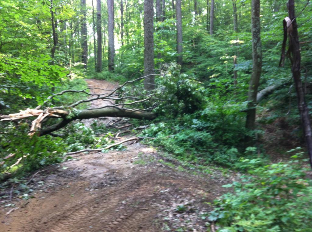 Wayne National Forest  0C942926-1D4D-48AF-9099-DEE9D6531EBB_zpsubozrlli