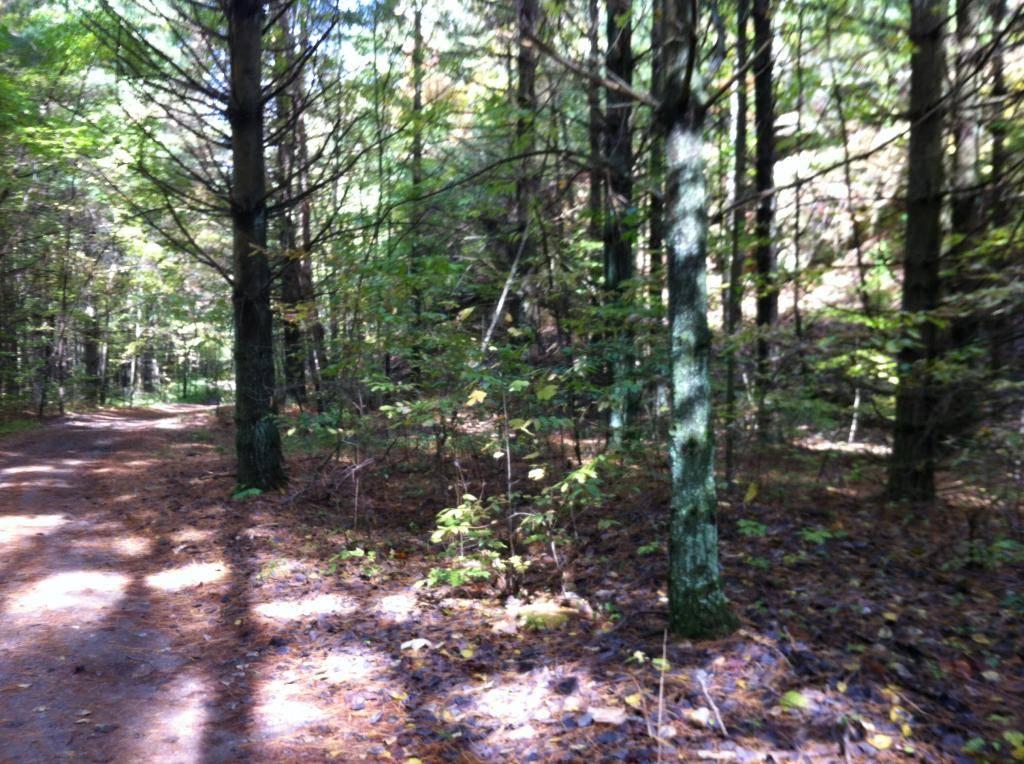 Wayne National Forest  - Page 2 2A10ED4F-5AC8-496D-B2E9-60F5A35A77B8_zpsy8atct78