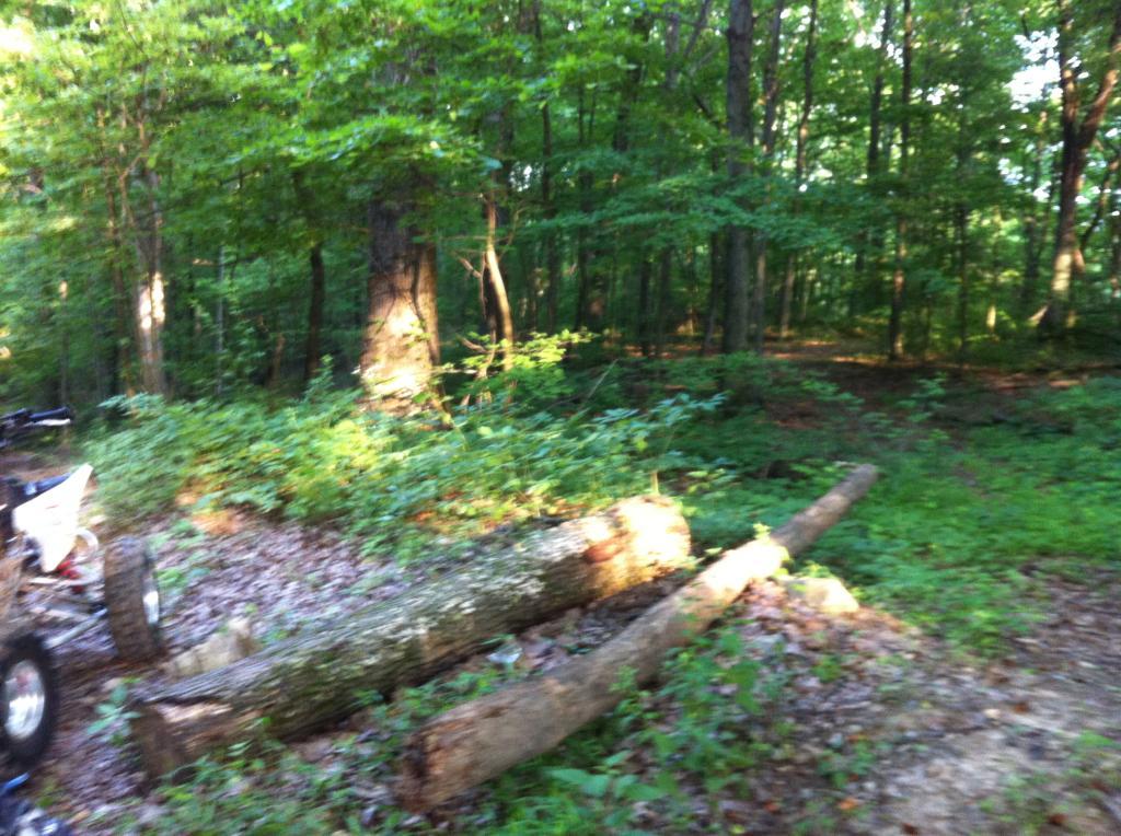 Wayne National Forest  E728C944-0C00-42E6-8B3C-8BC3ACB204F2_zpsmssculjc