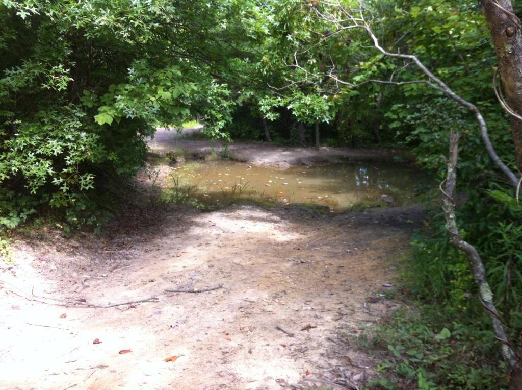Wayne National Forest  - Page 2 EB610DEE-0284-4FFA-A5D5-9E794D88E7AA_zpszf0ocfii