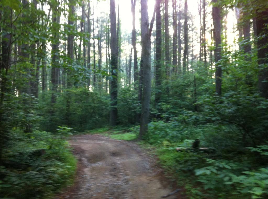 Wayne National Forest  - Page 2 F3937B44-2A00-408A-AB1C-8F465942A00F_zps4zjfjvge