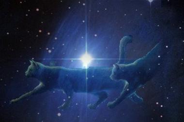 Starclan.png StarClan image by ceruleanflower
