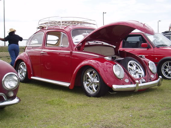 66 Bug Project Dc1f2f46