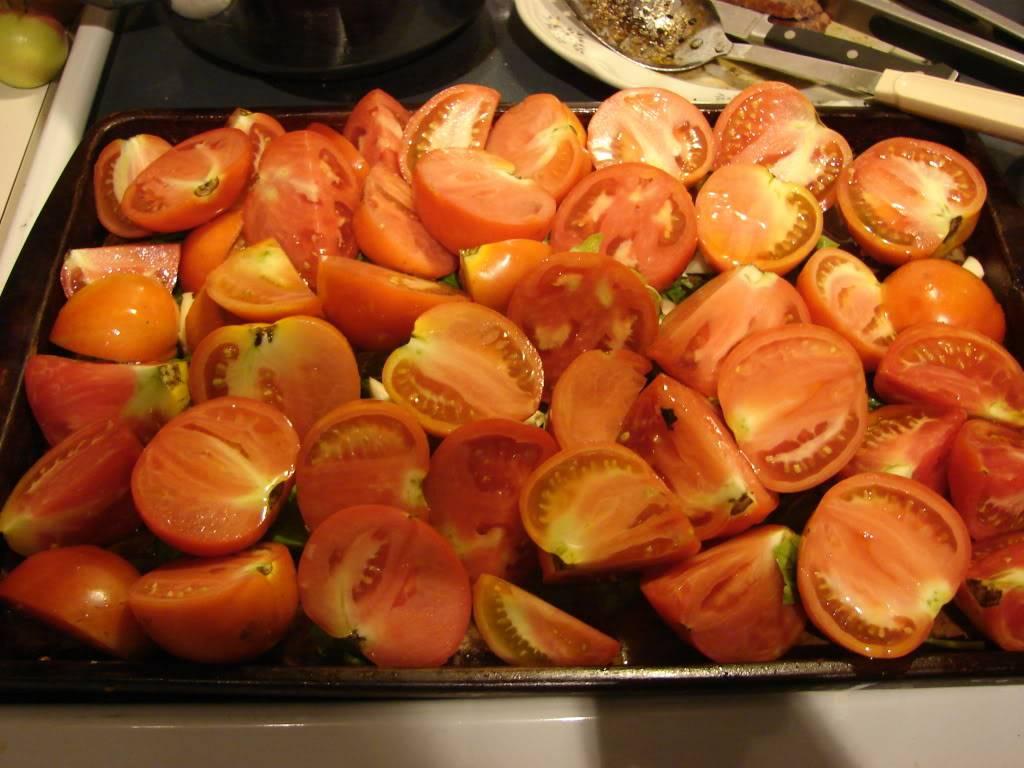 Canning tomato sauce without peeling??? DSC03986