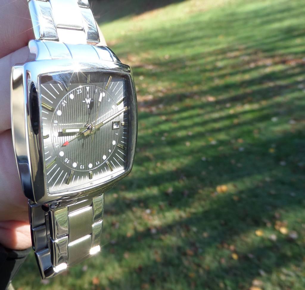 Another WUS F72 forum watch.....The GMT. SAM_3560_zpsujygjokw