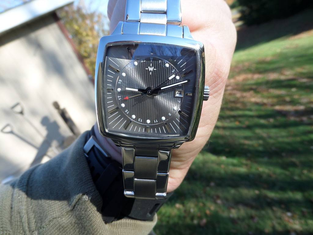 Another WUS F72 forum watch.....The GMT. SAM_3561_zpsumodffts