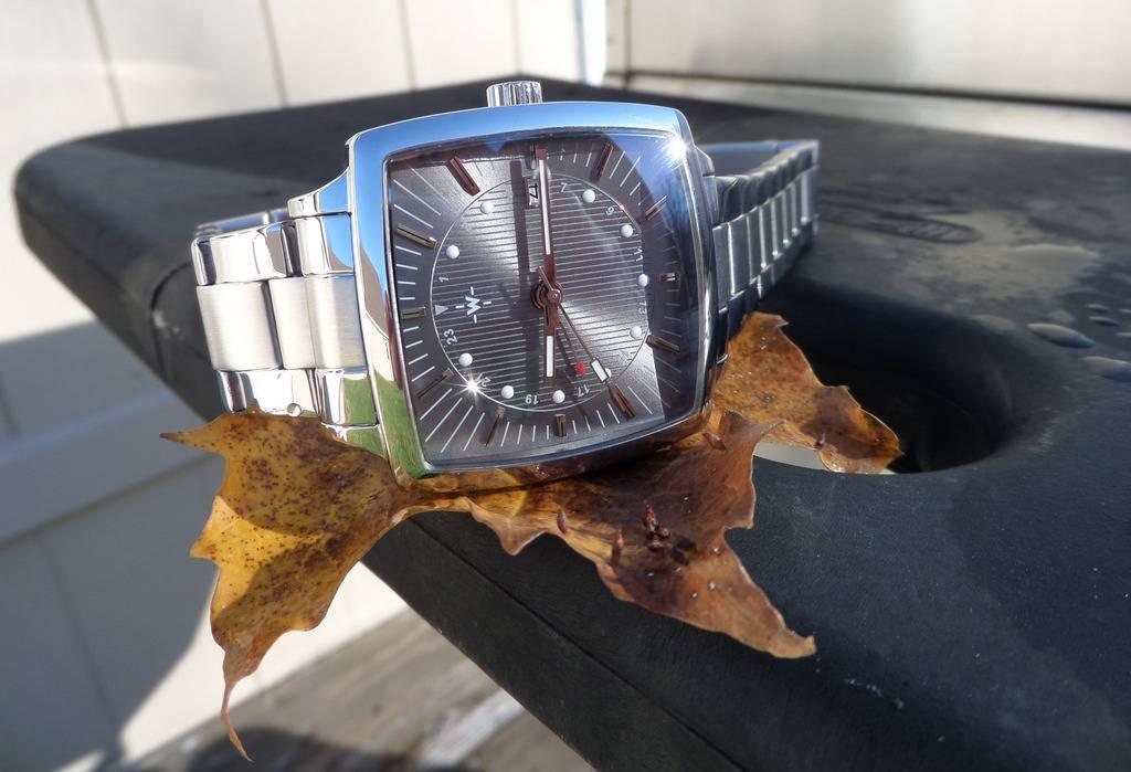 Another WUS F72 forum watch.....The GMT. SAM_3578_zpssh2b4ifn