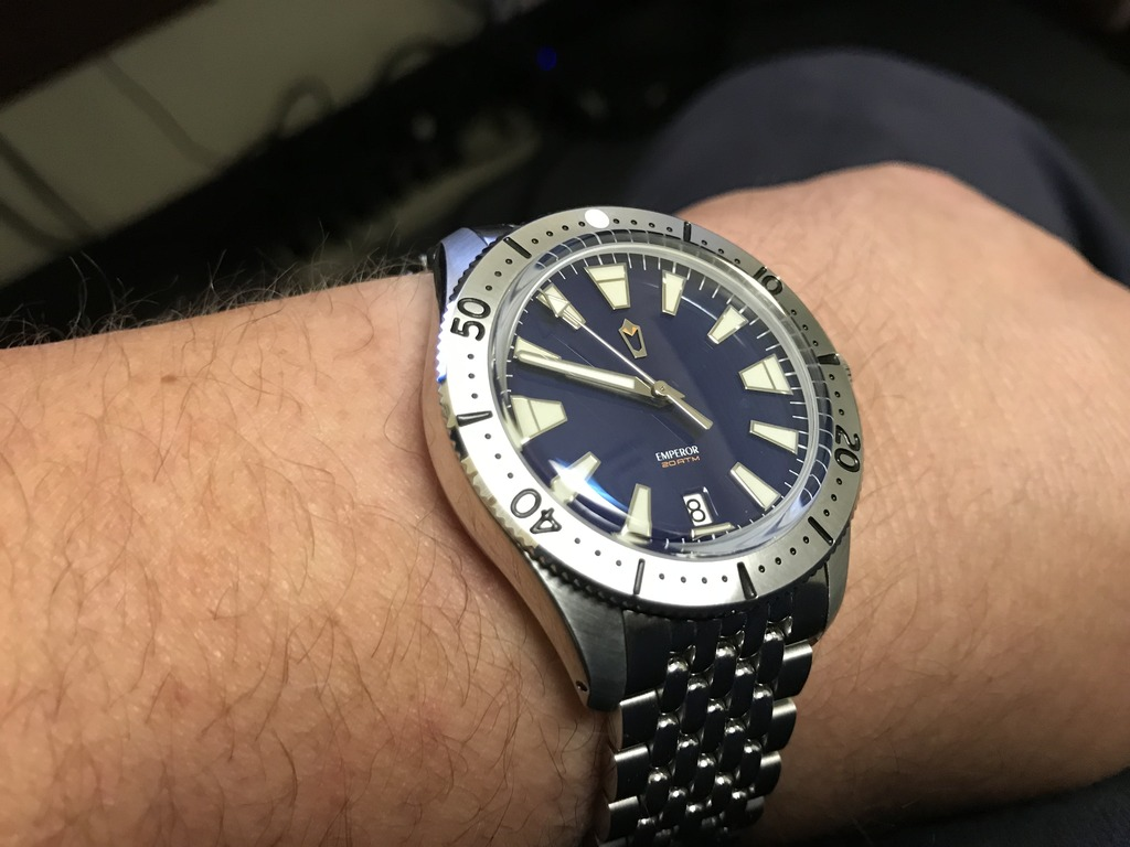 2017 WUS F71 Project watch, 'Emperor' IMG_0718_zps2pzhmirw