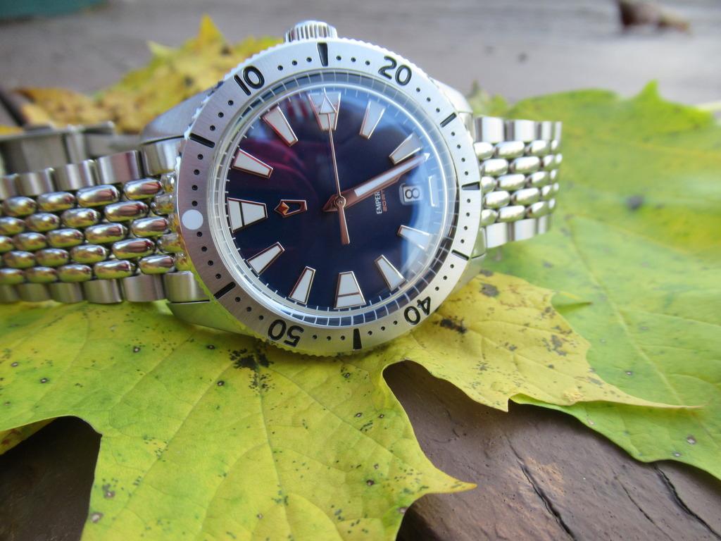 2017 WUS F71 Project watch, 'Emperor' IMG_0765_zpssfjjjyk3
