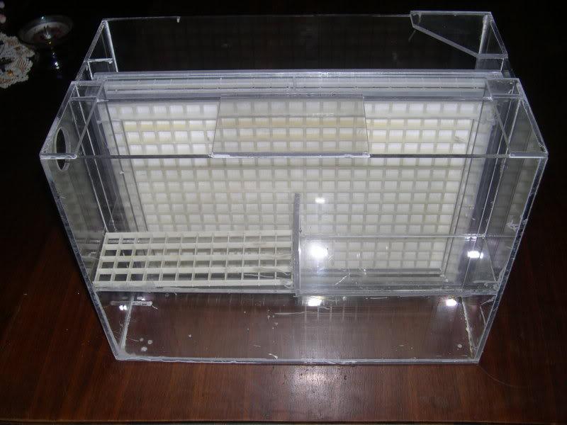 350g tank build - Page 2 DSCN0208