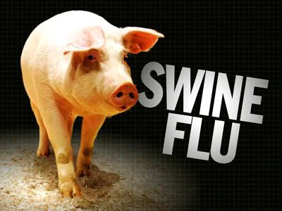 How to Disinfect and Prevent The Swine Flu Swine_flu_pig