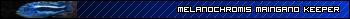 "Melanochromis Cyaneorhabdos ""Maingano"" Ubd7824lj5"