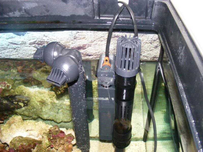 Fluval Vicenza sump build and diy sump info DSCF3175Large