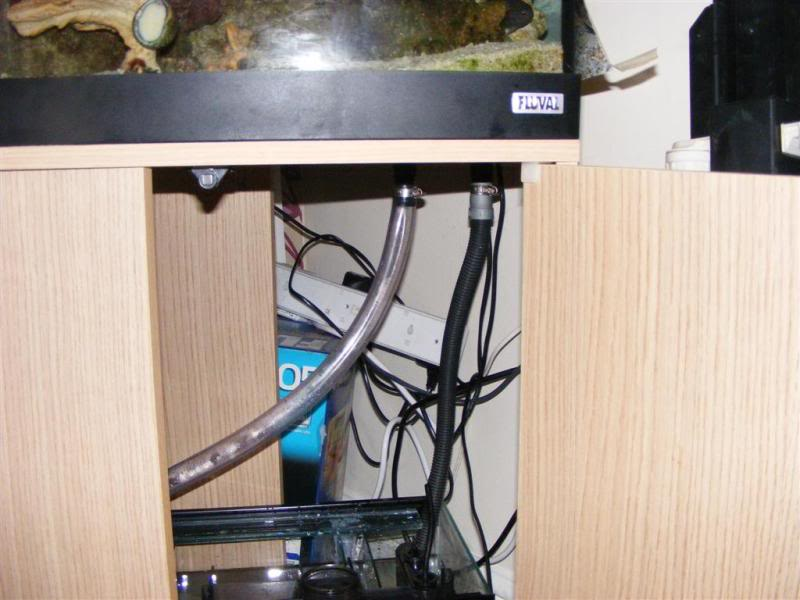 Fluval Vicenza sump build and diy sump info DSCF3179Large