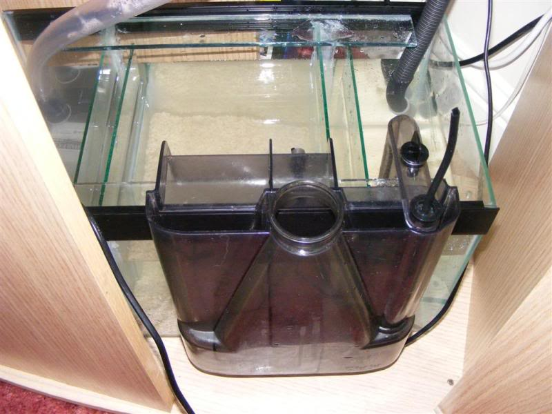 Fluval Vicenza sump build and diy sump info DSCF3180Large