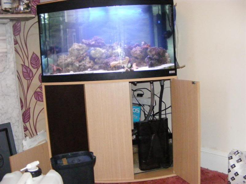 Fluval Vicenza sump build and diy sump info DSCF3183Large
