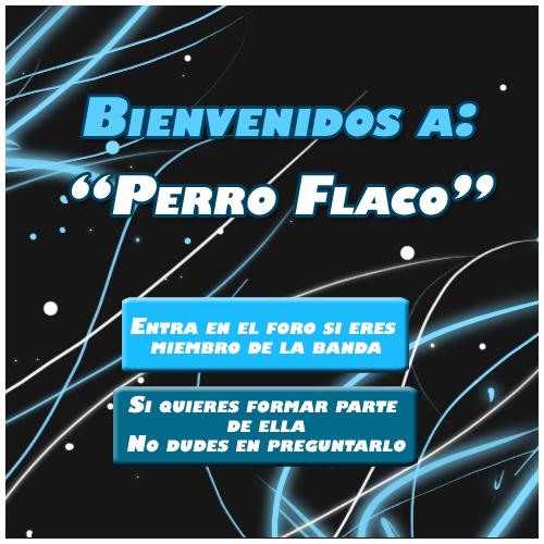Perro Flaco - Portal Perroflacobienveenidocopia