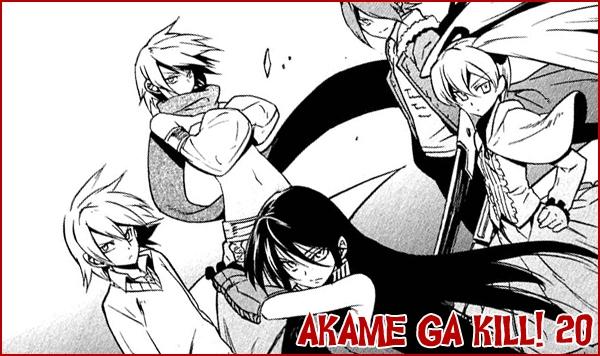 Akame ga Kill! - 20 Akame20