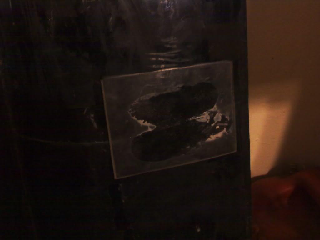 Raptors 110 build log Patchedcrackinoverflowbox
