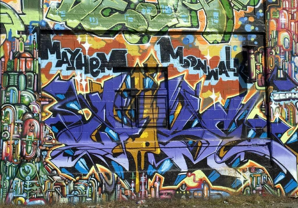 Nghệ thuật Graffiti 1435nyc05_naideau13522