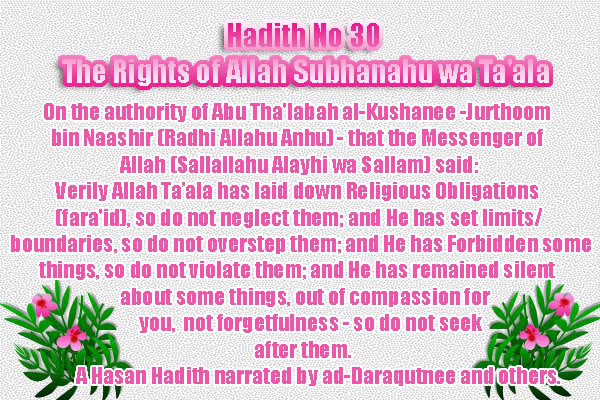 The Forty Nawawi Hadith - Page 2 Had30
