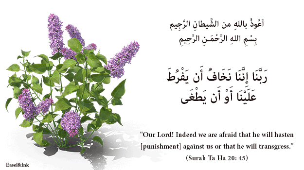 Duas from the Qur'an - Page 2 51