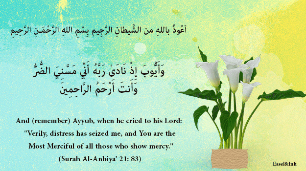 Duas from the Qur'an - Page 3 53
