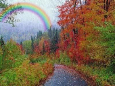 My Graphics Rainbow