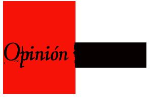 [Sintesis]Vampire Knight. Opinion-1