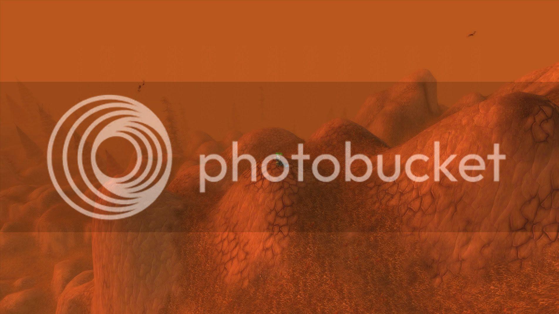 Picture Contest !!! WoWScrnShot_050910_171940