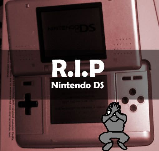 iPod Touch, The next DS? Rip-ds1