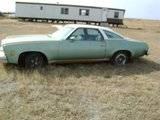 The New Mint Green 73 Malibu 350 Th_kidscar022