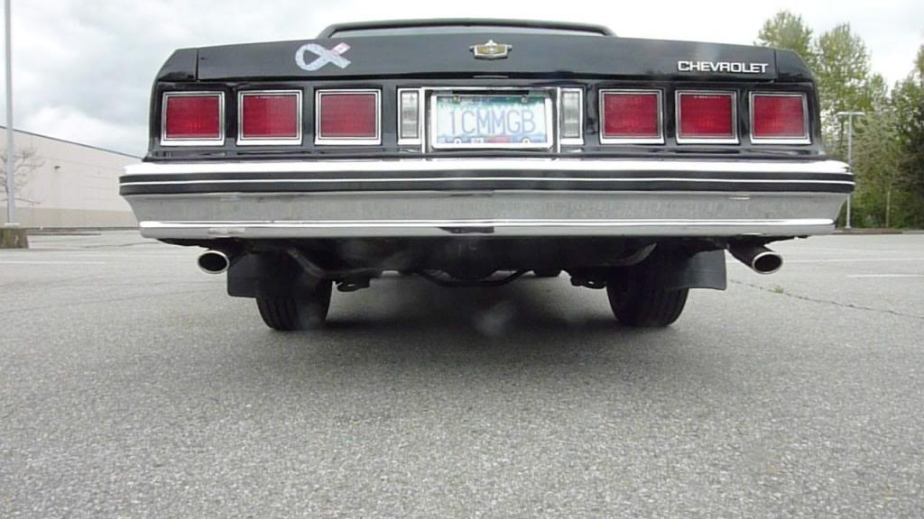 83 Caprice Bump1_zps79714aac