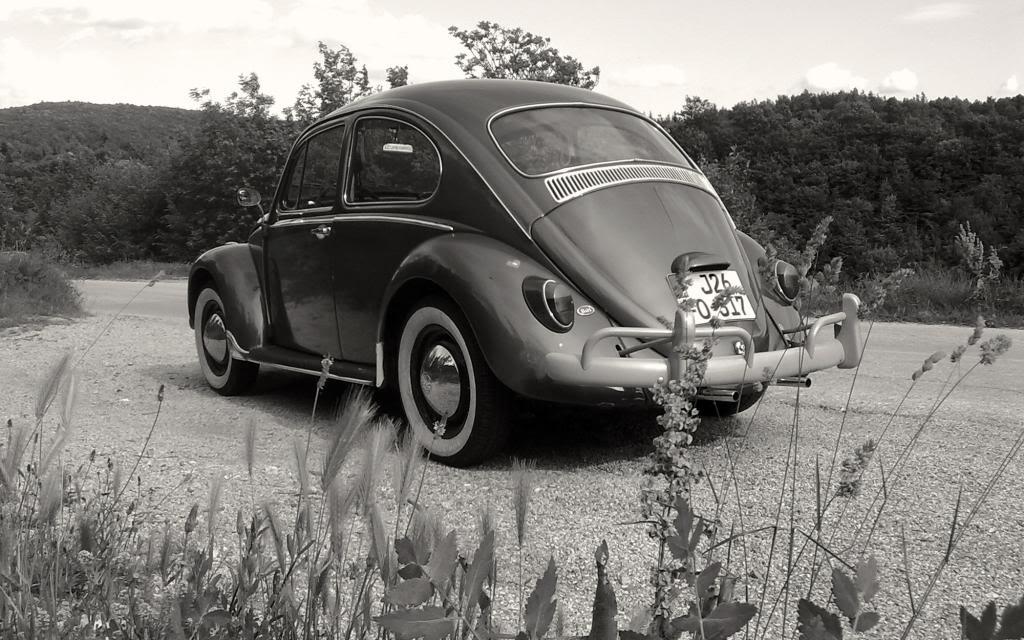 VW Käfer 1965 - Page 2 Vw_wallpaper01_zps95978c5b