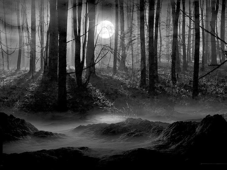Bois d'Outre-Songe DarkForestEntrancetoMyHome