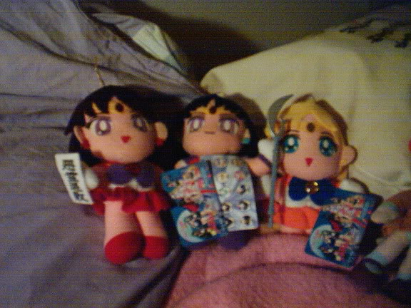 Mina älskade Sailormoon-mjukisar! IM000928