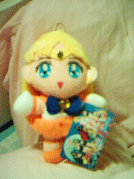 Sailor Moon grejer IM000931