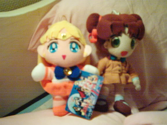 Sailor Moon grejer IM000932