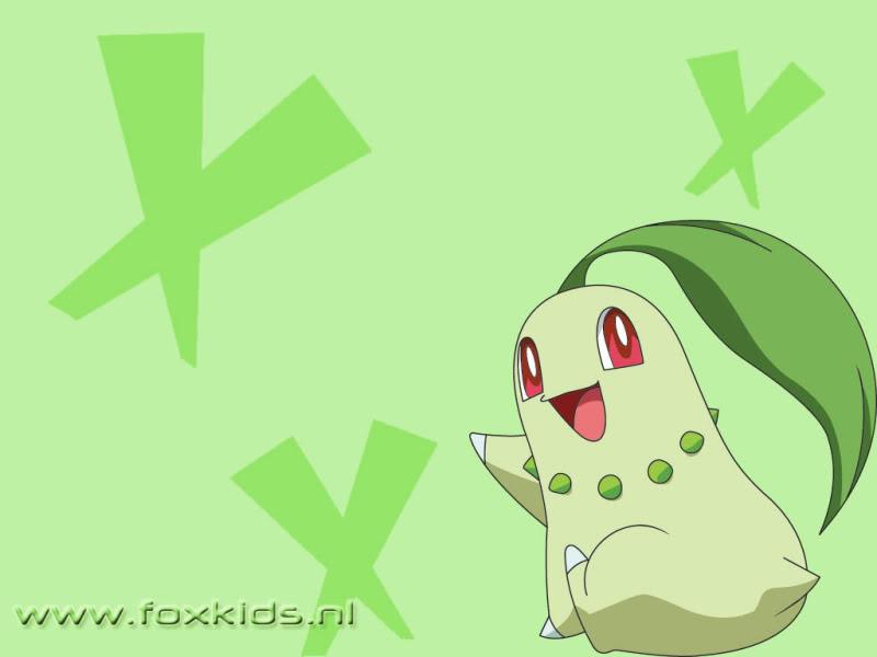 Nhận tìm , post hình Wallpaper pokemon , pokemon - Page 2 Chikorita-1